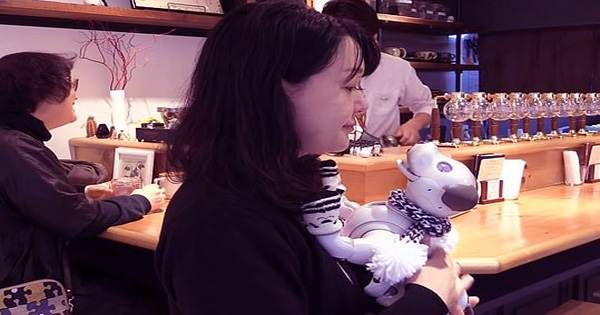 For robot dogs a café in Tokyo is hosting weekly play dates and birthday parties