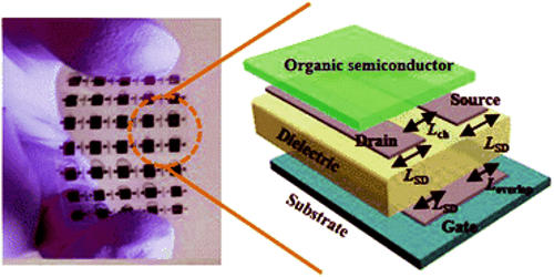 physicists develop printable organic transistors 1